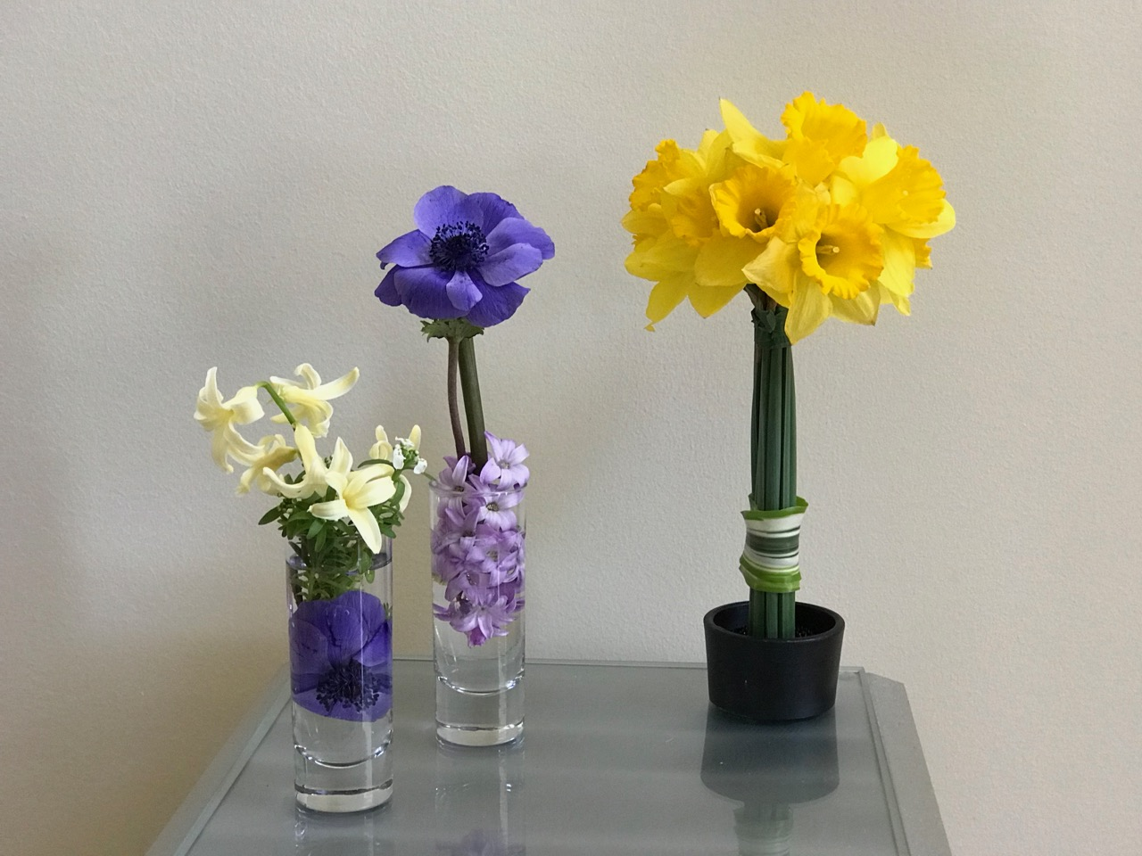 In a vase on monday colors of spring trio pbmgarden in a vase on monday colors of spring trio reviewsmspy
