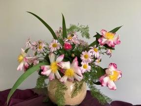 Chrysanthemum and Camellia -November 5, 2018