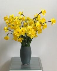 Daffodils -February 18, 2019