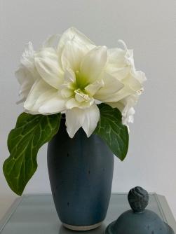 Blue Vase -January 11, 2021