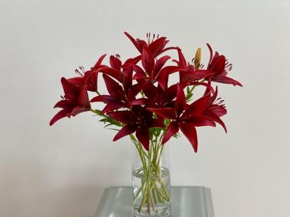 Red In Glass Vase -June 14, 2021